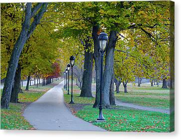 Kelly Drive Canvas Print - Kelly Drive In Autumn by Bill Cannon