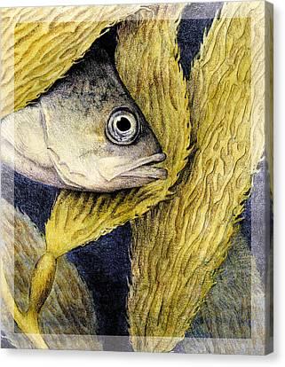 Kelp Hangout Canvas Print by Kirsten Carlson