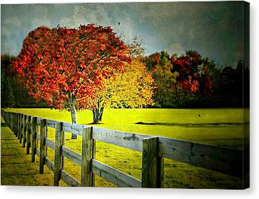 Kent At Autumn Canvas Print