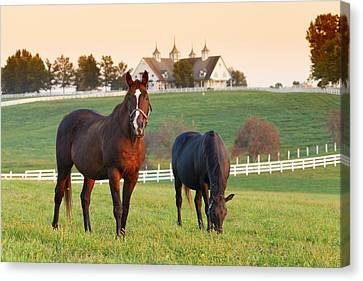 Kentucky Pride Canvas Print