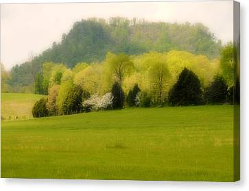 Kentucky Springtime Canvas Print by Lyle  Huisken