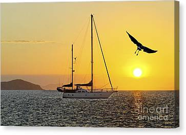 Keppel Island Sunset Canvas Print by Geoff Childs