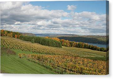 Keuka In Autumn Canvas Print by Joshua House