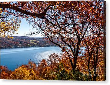 Canvas Print featuring the photograph Keuka Lake Vista by William Norton