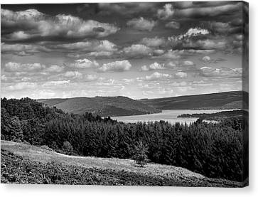 Pastoral Vineyard Canvas Print - Keuka Landscape I by Steven Ainsworth