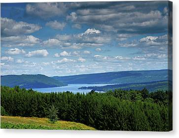 Pastoral Vineyard Canvas Print - Keuka Landscape V by Steven Ainsworth