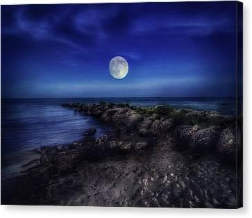 Key West Moonrise  Canvas Print