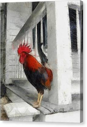 Key West Porch Rooster Canvas Print by Michelle Calkins