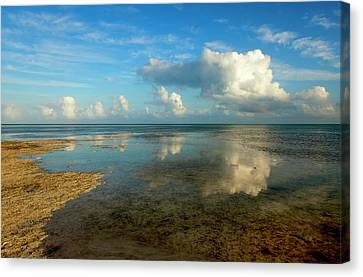 Reflection Canvas Print - Keys Reflections by Mike  Dawson