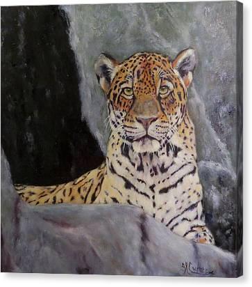 Khensu,  Jaguar Canvas Print