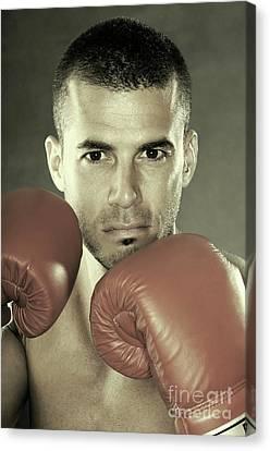Kickboxer Canvas Print by Oleksiy Maksymenko