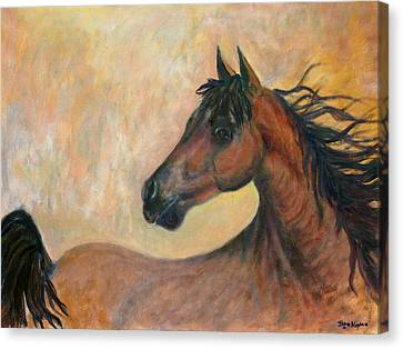 Kiger Mustang Canvas Print by Ben Kiger