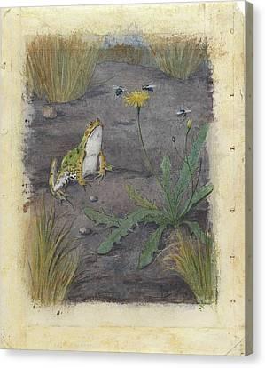 Kikker Bij Een Paardebloem Met Vliegen Canvas Print by MotionAge Designs