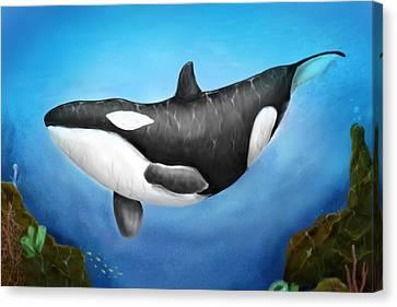 Killer Whale Canvas Print by Christian Lopez