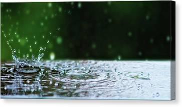 Kinetic Raindrops Canvas Print by Lisa Knechtel