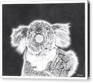 Koala Canvas Print - King Koala by Remrov