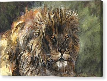King Of The Beasts Canvas Print by Leisa Temple