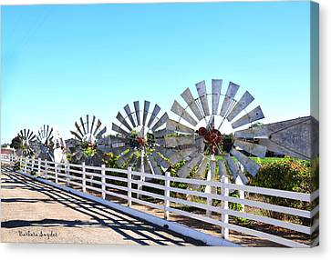 King Of The Windmills Canvas Print by Barbara Snyder