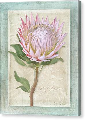 King Protea Blossom - Vintage Style Botanical Floral 1 Canvas Print by Audrey Jeanne Roberts