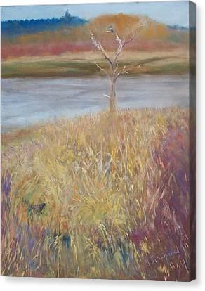 Kingfisher Canvas Print by Jackie Bush-Turner