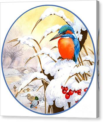 Kingfisher Plate Canvas Print