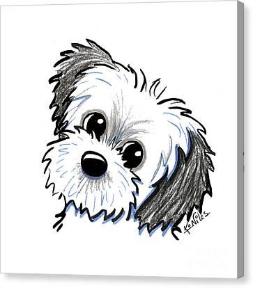 Shihtzu Canvas Print - Kiniart Shih Tzu Cutie by Kim Niles
