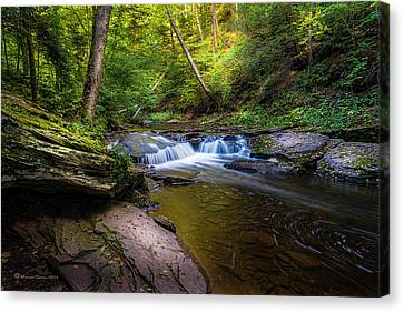 Kitchen Creek Canvas Print by Marvin Spates