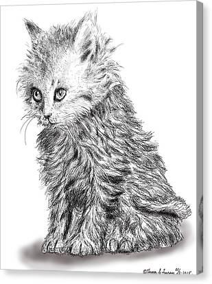 Kitten #1 Canvas Print
