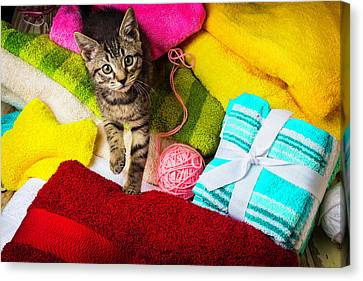 Kitten Among Bath Towels Canvas Print by Garry Gay