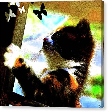 Kitten And Butterfly's Canvas Print by David Lee Thompson