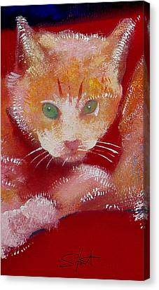 Kitten Canvas Print by Charles Stuart