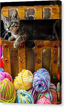 Kitten Hiding In Treasure Box Canvas Print by Garry Gay