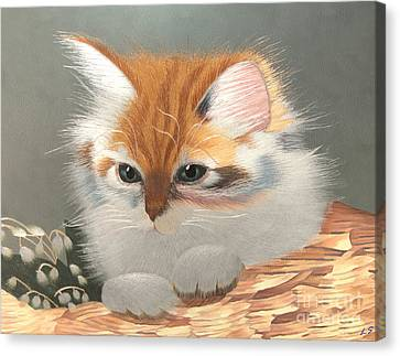 Kitten In A Basket Canvas Print by Sergey Lukashin