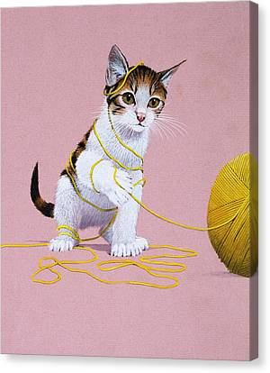 Kitten With Ball Of Wool Canvas Print by English School
