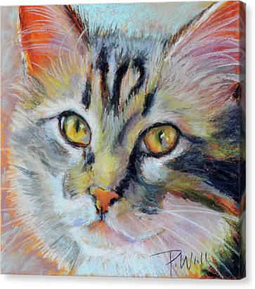 Kitters II Canvas Print by Pattie Wall