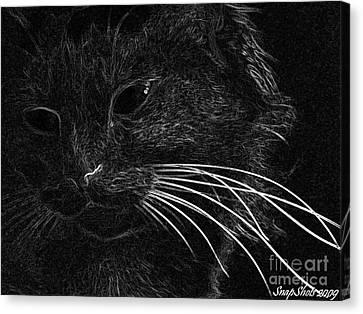 Kitty Canvas Print by Emily Kelley