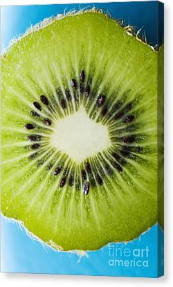 Kiwi Cut Canvas Print by Ray Laskowitz - Printscapes