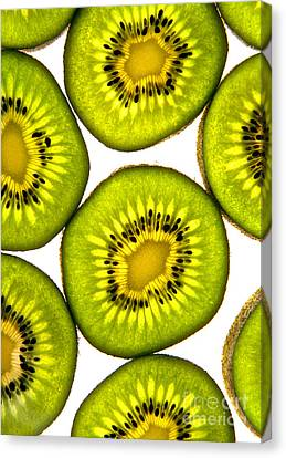 Kiwi Fruit Canvas Print by Bruce Stanfield