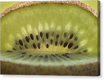 Kiwi Fruit Macro Canvas Print by Mark Duffy