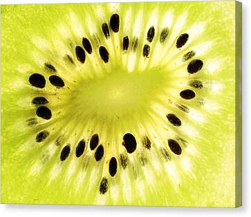 Kiwi Fruit Canvas Print by Paul Ge