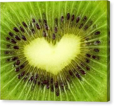 Kiwi Heart Canvas Print by Boyan Dimitrov