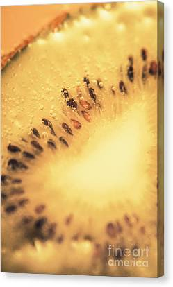 Kiwi Margarita Details Canvas Print by Jorgo Photography - Wall Art Gallery