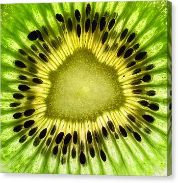 Kiwi Up Close Canvas Print by June Marie Sobrito