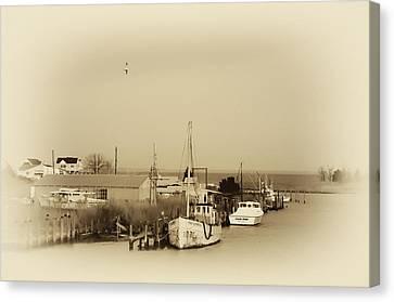 Knapps Narrows Tilghman Island Canvas Print by Bill Cannon