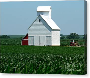 Illinois Barns Canvas Print - Knee High By The Fourth Of July by David Bearden