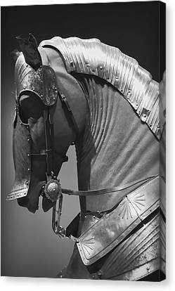 Knight's Armored Battle Horse Canvas Print by Daniel Hagerman