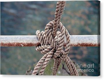 Canvas Print featuring the photograph Knot Of My Warf by Stephen Mitchell