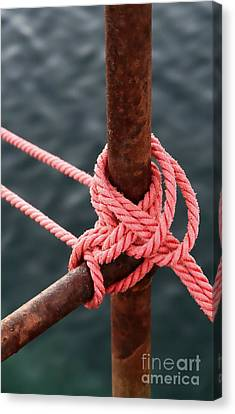 Canvas Print featuring the photograph Knot On My Warf IIi by Stephen Mitchell