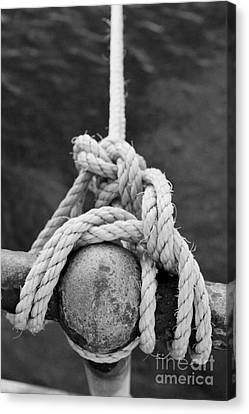 Canvas Print featuring the photograph Knot On My Warf Iv by Stephen Mitchell