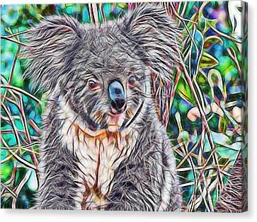 Koala Canvas Print by Marvin Blaine